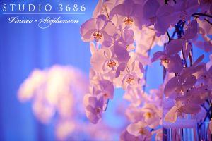 090801_0760.jpg